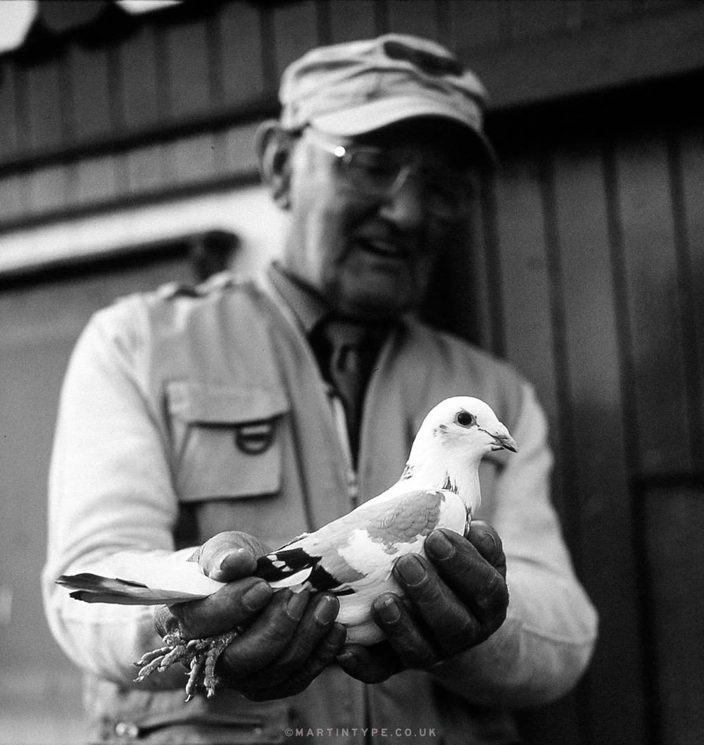 Maurice Surtees, Ryhope Pigeon Cree [Andy Martin - martintype.co.uk] 16